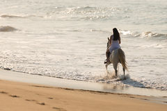 Lady horse ride beach. Back view of young lady horse ride on the beach Stock Photo