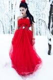 Lady i klänning på snow arkivfoton