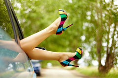 Lady inside. Photo of nice legs of elegant woman stuck from car window royalty free stock photo