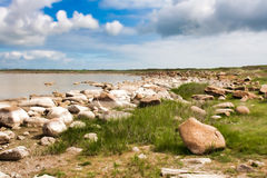 Lady Island Lake. Landscape at the Lady Island Lake in Ireland royalty free stock photography