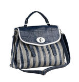 Lady leather handbag Royalty Free Stock Images