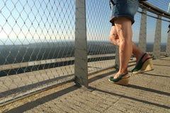 Legs Mini Skirt Stock Photography