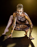 Lady Leopard BB124742 Royalty Free Stock Image