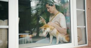 Lady listening to music with earphones and smartphone kissing dog in cafe. Lady loving pet owner is listening to music with wireless earphones using smartphone stock video footage