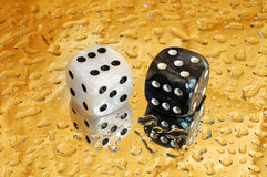Lady luck craps:  eleven. Dice on golden droplets background showing eleven points Royalty Free Stock Images
