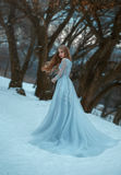 Lady in a luxury lush blue dress. Fantastic shot, fairytale princess is walking in the winter forest, fashionable toning, creative computer colors stock photo