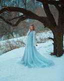 Lady in a luxury lush blue dress. Fantastic shot, fairytale princess is walking in the winter forest, fashionable toning, creative computer colors royalty free stock photography