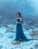 Lady in a luxury lush blue dress. Fantastic shot, fairytale princess is walking in the winter forest, fashionable toning, creative computer colors royalty free stock image