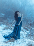 Lady in a luxury lush blue dress. Fantastic shot, fairytale princess is walking in the winter forest, fashionable toning, creative computer colors stock photography