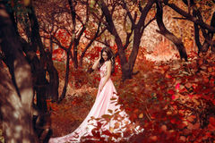 Lady in a luxury lush pink pastel dress. Near the tree,fantastic shot,fairytale princess is walking in the autumn forest,fashionable toning,creative computer Stock Photo