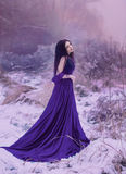 Lady in a luxury lush purple dress. Fantastic shot, fairytale princess is walking in the winter forest, fashionable toning, creative computer colors stock photo