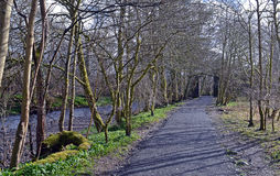 Lady Mary's Walk, Crieff, Perthshire, Scotland Royalty Free Stock Photo