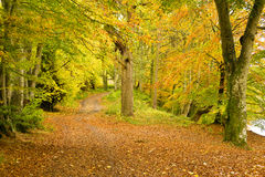 Lady Mary's Walk, Crieff, Scotland, UK Stock Images