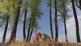 Lady in the meadow. With trees setting up the camp stock footage