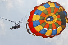 Lady para gliders overhead Royalty Free Stock Photos