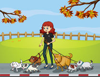 A lady at the park strolling with her pets Royalty Free Stock Photo