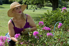 Lady Pausing in Garden Stock Photos