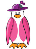 Lady Penguin Stock Photo