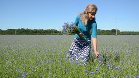 Lady pick flowers field Royalty Free Stock Photo