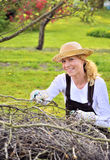 Young woman working in orchard, after tree pruning, pile of cut branches and twigs of fruit trees, cutting branches of apple trees Stock Image