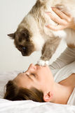 Lady playing with cat in bed Stock Photos