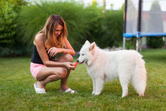 Lady playing with her dog Royalty Free Stock Images
