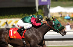 Lady Railrider Wins the California Cup Matron Stock Photo