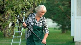 Lady with rake in garden. Woman in apron working. How to care for nature stock video