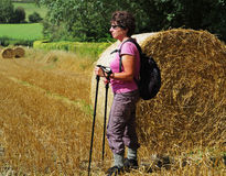 Lady Rambler standing by a Bale of Hay Royalty Free Stock Images