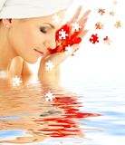 Lady with red petals in water. Puzzle of lovely woman with red flower petals in water Stock Image