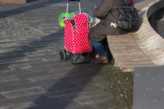 lady with red trolley royalty free stock image