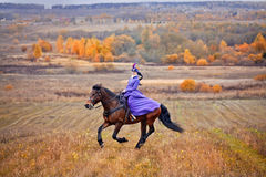 Lady in riding habbit. XIX Century at horse hunting Royalty Free Stock Images