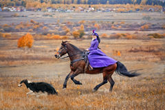 Lady in riding habbit. XIX Century at horse hunting Royalty Free Stock Photo