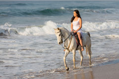 Lady riding horse beach. Pretty young lady riding a horse on the beach in early morning Royalty Free Stock Photos