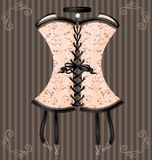 Lady's beige corset Royalty Free Stock Photo