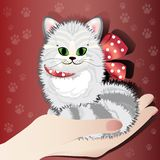 Lady`s hand holds a cute tabby kitten. Illustration of striped little cat sitting on woman`s open palm on red background with paw prints. Caring of pats concept Royalty Free Stock Image