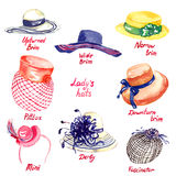 Lady`s hats types. Upturned Brim, Wide Brim, Narrow Brim, Downturn Brim, Pillbox, Mini, Derby, Fascinator, hand painted watercolor illustration Royalty Free Stock Photography
