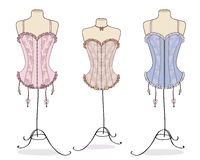 lady's red corsets Stock Images