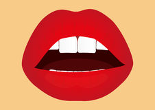 Lady's red lips Royalty Free Stock Image