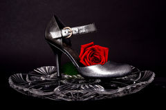 Lady's Shoe and rose Stock Photo
