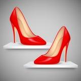 Lady's Shoe on Shelf Royalty Free Stock Photo