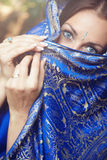 Lady in sari. Beautiful lady in blue Indian sari outdoors stock images