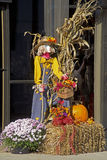 Lady Scarecrow, hay bales, pumpkins, and colorful mums. Stock Photos