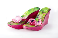 Lady shoes Stock Photography