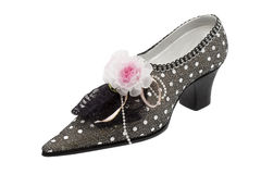Lady shoes elegant Royalty Free Stock Photo