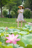Lady is shooting. The pretty Chinese lady is shooting lotus with a mobile phone royalty free stock photos