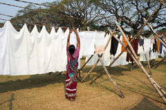 Lady spreading linen to dry at a Laundry of Fort Cochin Stock Images