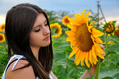 Girl in sunflower field. Young long-haired lady and sunflower Royalty Free Stock Images