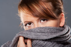 Lady in sweater Stock Image
