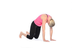 Lady in tights practicing yoga poses Royalty Free Stock Photo